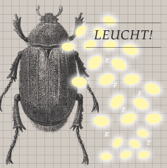 Leuchteffekt